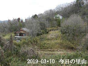 2019-03・10 今日の里山は・・・ (4).JPG