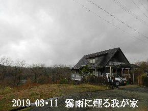 2019-03・11 今日の里山は・・・ (1).JPG
