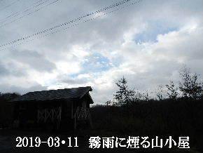 2019-03・11 今日の里山は・・・ (2).JPG