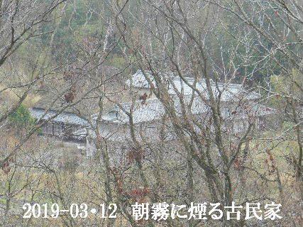 2019-03・12 今日の古民家模様.JPG