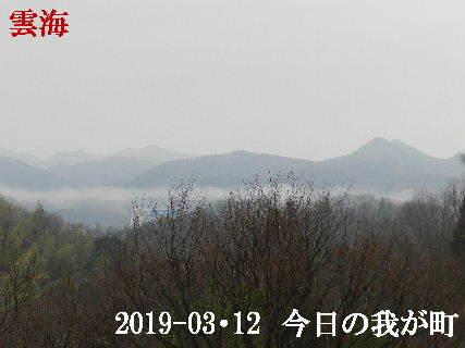 2019-03・12 今日の我が町.JPG