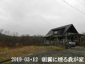 2019-03・12 今日の里山は・・・ (1).JPG