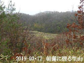 2019-03・12 今日の里山は・・・ (3).JPG