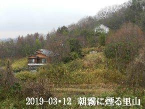 2019-03・12 今日の里山は・・・ (4).JPG