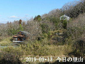 2019-03・13 今日の里山は・・・ (4).JPG