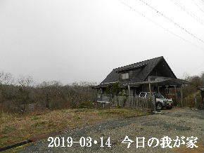 2019-03・14 今日の里山は・・・ (1).JPG