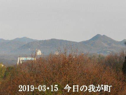2019-03・15 今日の我が町.JPG