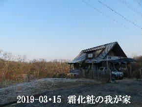 2019-03・15 今日の里山は・・・ (1).JPG
