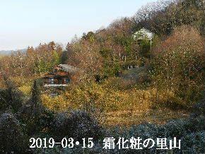 2019-03・15 今日の里山は・・・ (4).JPG