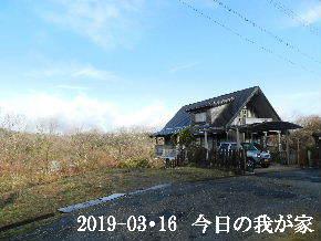 2019-03・16 今日の里山は・・・ (1).JPG