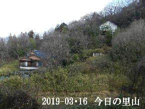 2019-03・16 今日の里山は・・・ (4).JPG