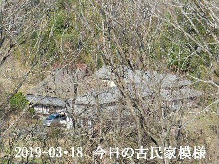2019-03・18 今日の古民家模様.JPG