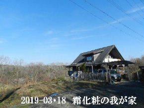 2019-03・18 今日の里山は・・・ (1).JPG