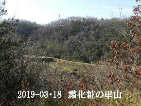2019-03・18 今日の里山は・・・ (3).JPG