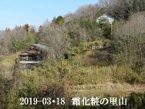 2019-03・18 今日の里山は・・・ (4).JPG