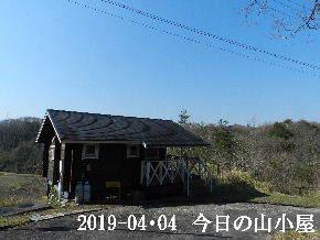 2019-04・04 今日の里山は・・・ (2).JPG