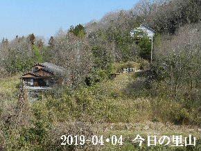 2019-04・04 今日の里山は・・・ (4).JPG