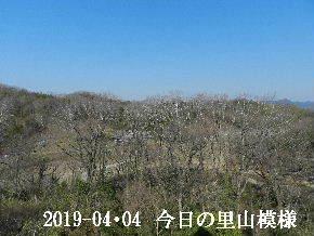 2019-04・04 今日の里山模様・・・ (2).JPG