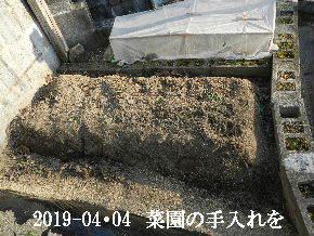 2019-04・04 我が家のスナップ・・・ (5).JPG