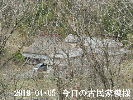 2019-04・05 今日の古民家模様.JPG