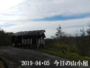 2019-04・05 今日の里山は・・・ (2).JPG