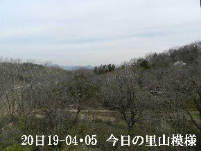 2019-04・05 今日の里山模様・・・ (1).JPG