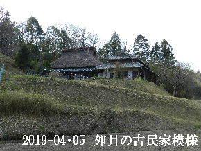 2019-04・05 今日の里山模様・・・ (7).JPG