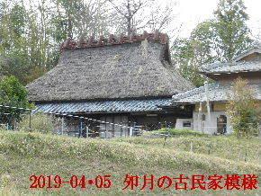 2019-04・05 今日の里山模様・・・ (8).JPG