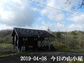 2019-04・08 今日の里山は (2).JPG