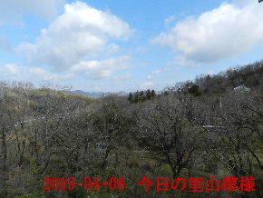 2019-04・08 今日の里山模様・・・ (1).JPG