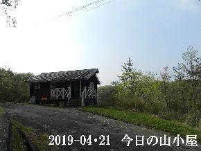 2019-04・21 今日の里山は・・・ (2).JPG