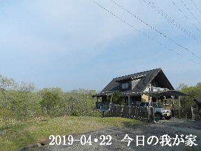 2019-04・22 今日の里山は・・・ (1).JPG