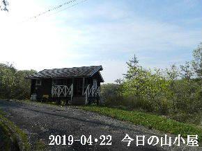 2019-04・22 今日の里山は・・・ (2).JPG