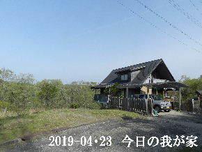 2019-04・23 今日の里山は・・・ (1).JPG