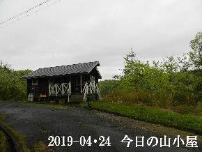 2019-04・24 今日の里山は・・・ (2).JPG