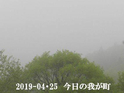 2019-04・25 今日の我が町.JPG
