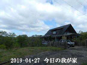2019-04・27 今日の里山は・・・ (1).JPG