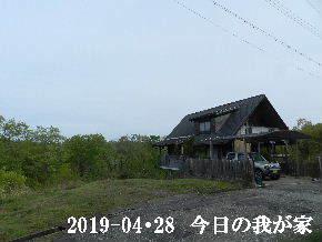 2019-04・28 今日の里山は・・・ (1).JPG