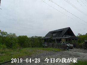 2019-04・29 今日の里山は・・・ (1).JPG