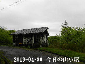 2019-04・30 今日の里山は・・・ (2).JPG