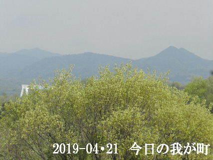 2019-04・21 今日の我が町.JPG