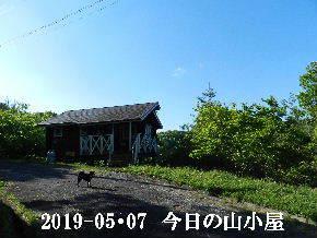 2019-05・07 今日の里山は・・・ (2).JPG