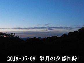 2019-05・09 里山の夕暮れ時 (2).JPG