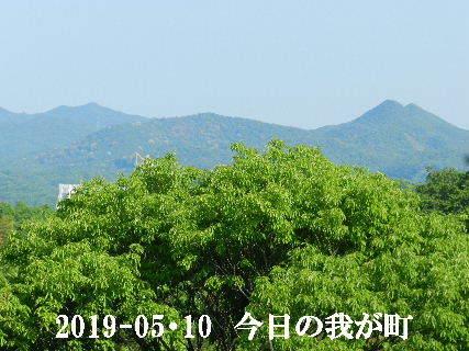 2019-05・10 今日の我が町.JPG