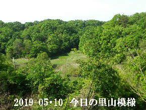 2019-05・10 今日の里山模様・・・ (2).JPG