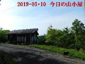 2019-05・10 今日の里山模様・・・ (3).JPG