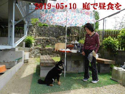 2019-05・10 我が家のスナップ・・・ (1).JPG