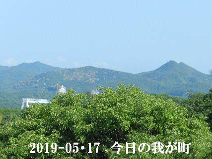 2019-05・17 今日の我が町.JPG
