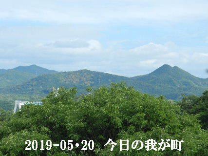 2019-05・20 今日の我が町.JPG