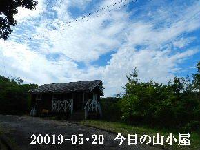 2019-05・20 今日の里山模様・・・ (2).JPG